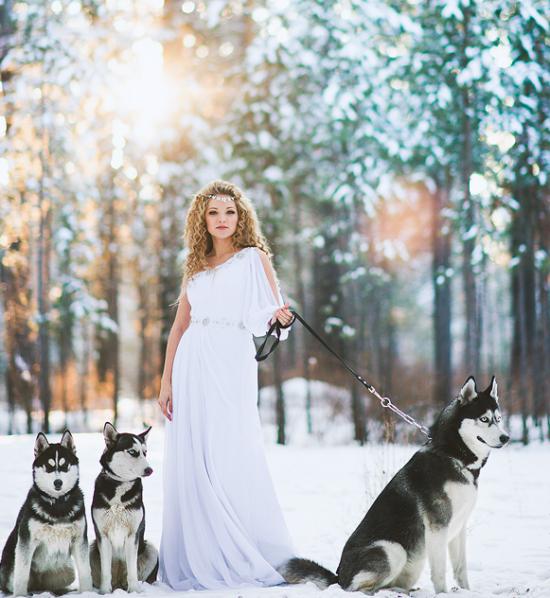 mariée hiver avec chiens.png