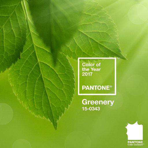 pantone-couleur-vert-greenery-pour-2017